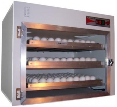 Chocadeira-de-Ovos-Preços-Onde-Comprar