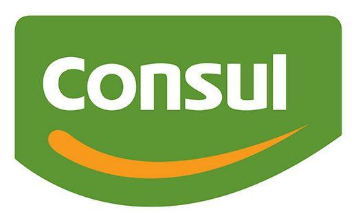 Consul-Assistência-Técnica-Autorizada-Telefone